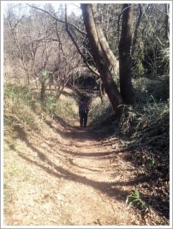 岩櫃城 細い坂道