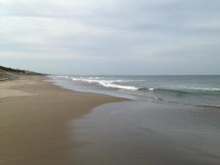 鹿島灘海浜公園 砂浜