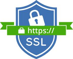 SSL化でサイト見れない?50サイトhttps対応したSEO効果の確認メモ