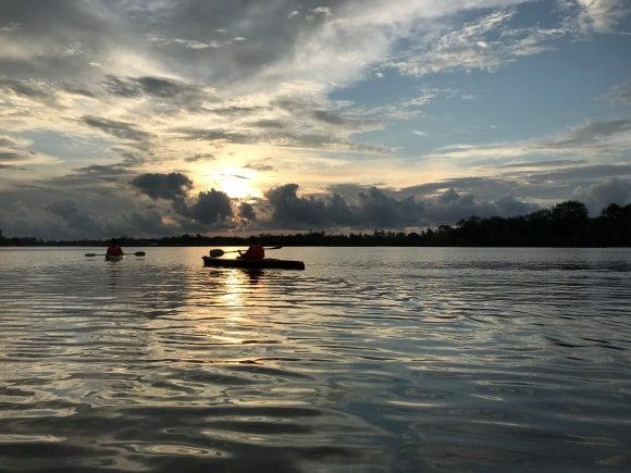 大自然満喫!コタキナバルの現地ツアー カヤックで蛍とテングザルを見よう!
